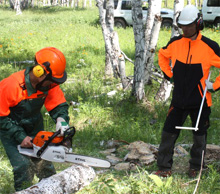 Mongolia. Forestry practical training in Tunkhel bag, Mandal Soum, Selenge aimag 2013