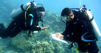 Jordan. Marine protection at a coral reef. Divers collect important information in the Gulf of Aqaba. © GIZ