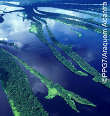 The Amazon rainforest extends across an area the size of the EU. © PPG7/Araquem Alcantra