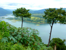 emerging environmental issues in north east india