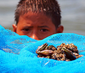 Philippines. A young boy holds out tahong for sale, beholding himself to water and to people. © GIZ
